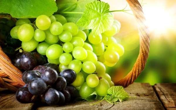 Рецепти смачних заготовок з винограду на зиму: вино, компот, сік, желе і навіть маринований виноград